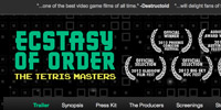 Ecstasy of Order WordPress Theme